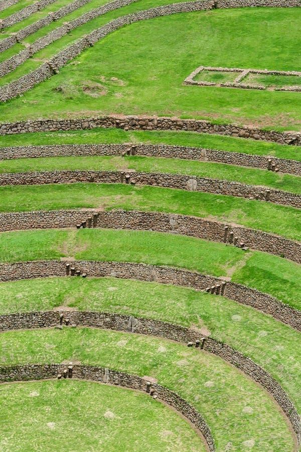 Moray Ruin in Cusco, Peru royalty-vrije stock foto