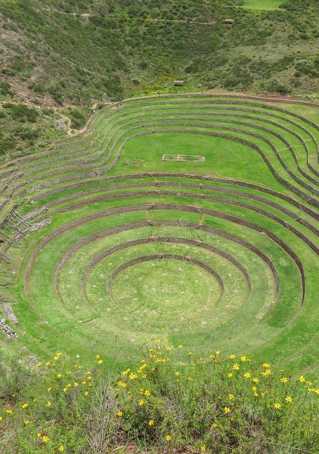 Moray Ruin in Cusco, Peru royalty-vrije stock afbeelding