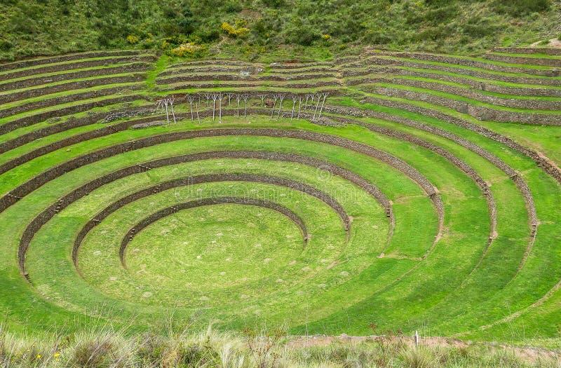 Moray Ruin in Cusco, Peru royalty free stock photo