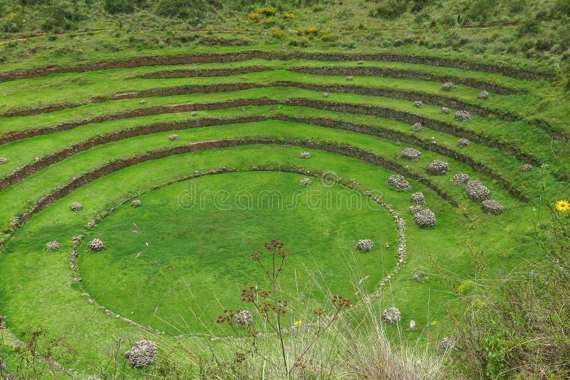 Moray Ruin in Cusco, Peru stock photography