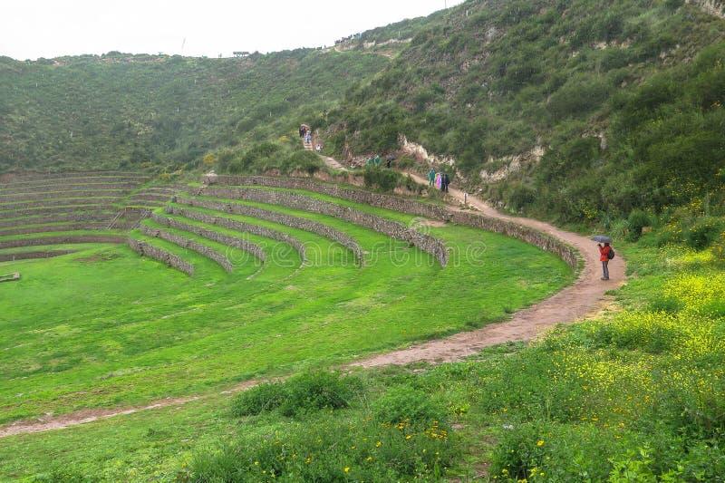 Moray Ruin i Cusco, Peru royaltyfria foton