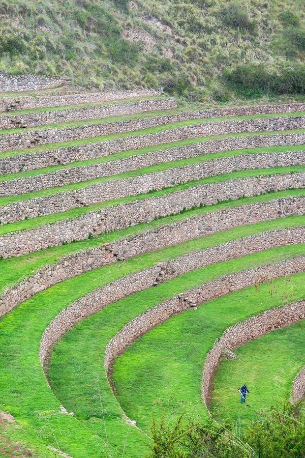 Moray Ruin i Cusco, Peru arkivbild
