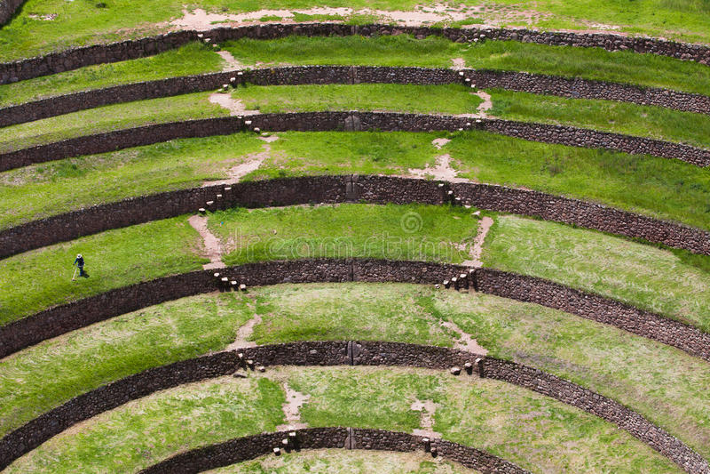 Moray Terraces imagens de stock