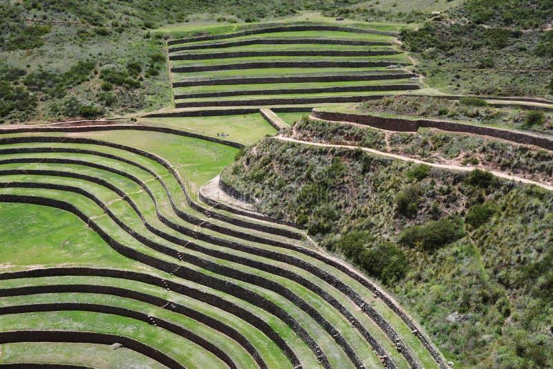 Moray, vale sagrado dos Incas, Peru foto de stock royalty free
