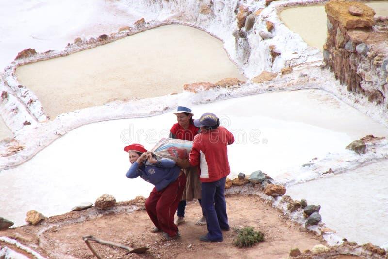morayperu salt terrasser arkivfoto