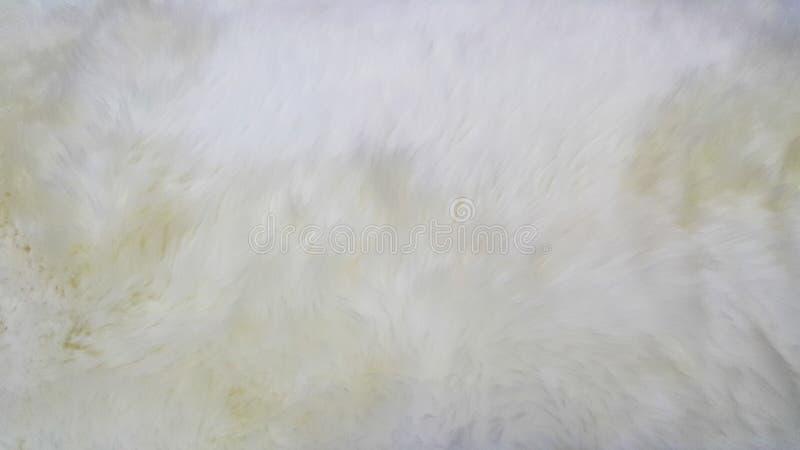 Morbidezza di lana bianca immagine stock