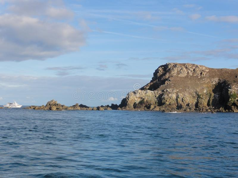 Morbihan - das Ile Zusatz-Oiseaux - Frankreich lizenzfreie stockbilder