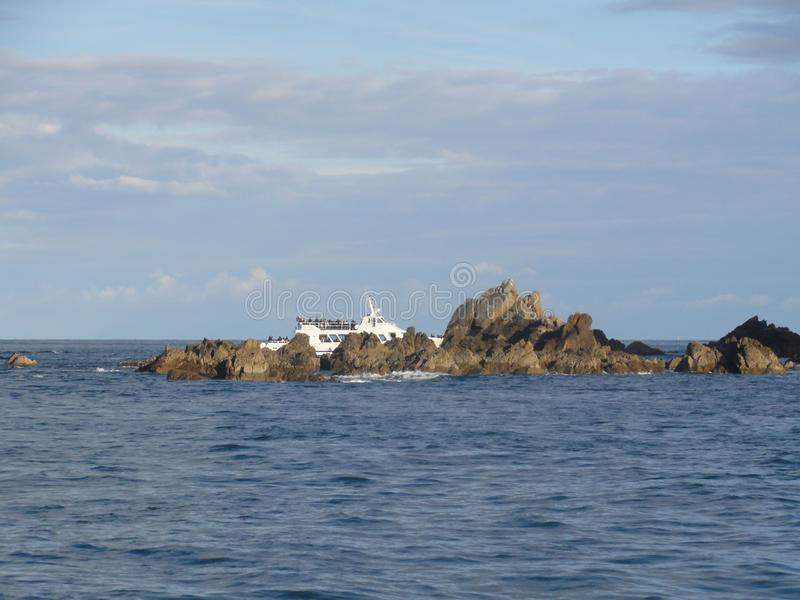 Morbihan - Ilen hjälpOiseaux och fartyg arkivbilder