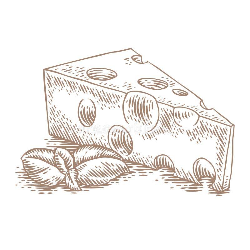 Morceau de fromage avec le basilic illustration libre de droits