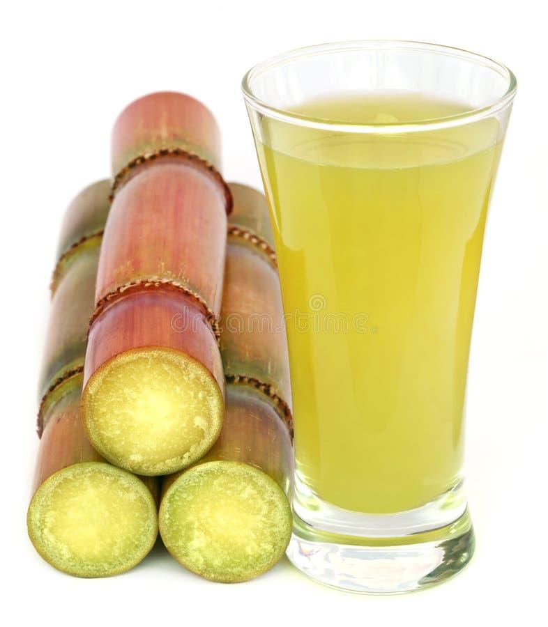 Morceau de jus de canne à sucre photo stock