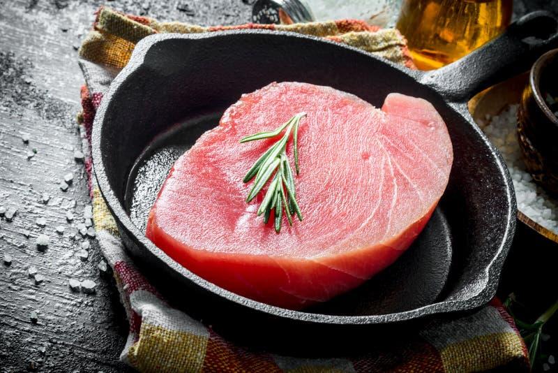 Morceau de thon cru dans une casserole avec le romarin photographie stock libre de droits