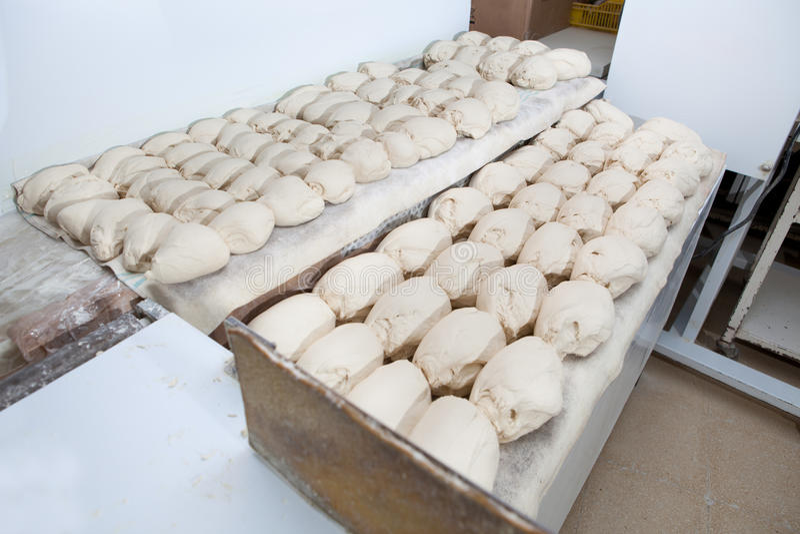Morceaux de dought de pain avant la fermentation photo libre de droits