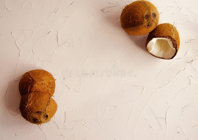 Morceaux de noix de coco sur le fond blanc, configuration plate, vue sup?rieure Ton de corail photos libres de droits
