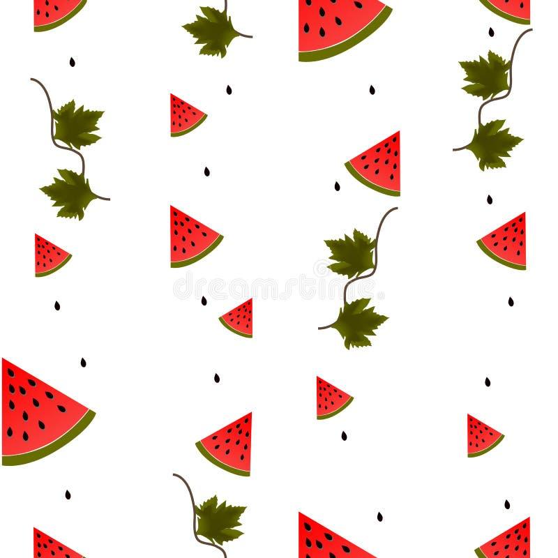 Morceaux, feuilles et graines de pastèque sur le fond blanc illustration libre de droits