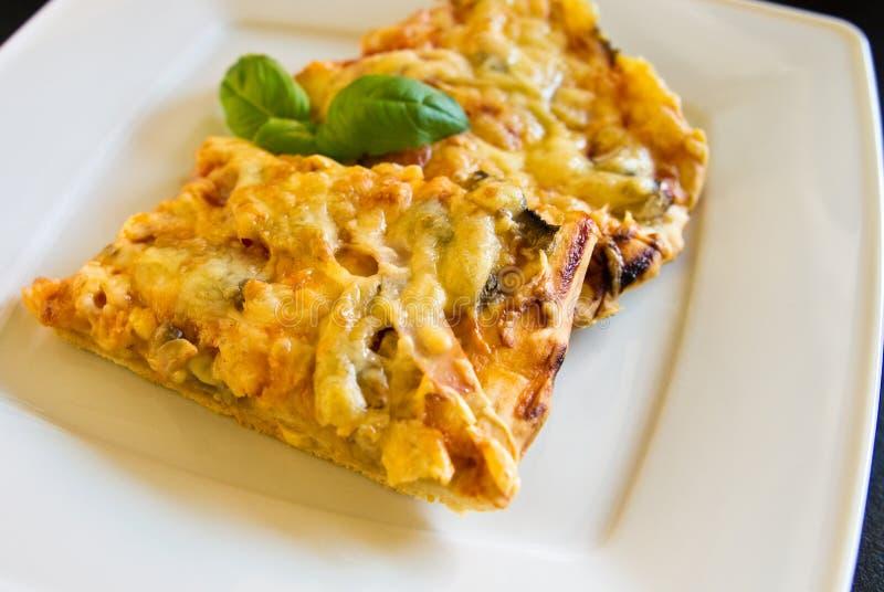 Morceaux savoureux de pizza faite maison du plat blanc image libre de droits
