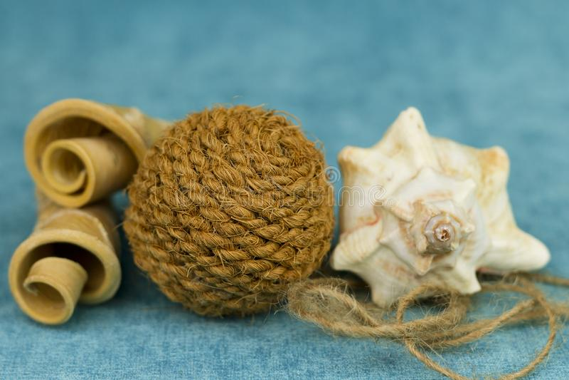 Morceaux tordus de bois, de coquillage et d'une boule de corde image stock