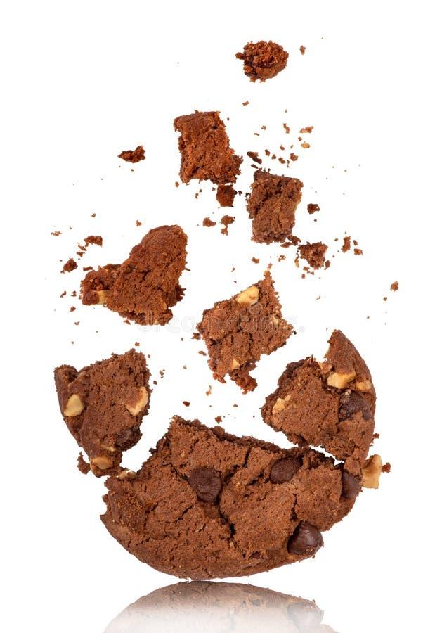 Mordido en la galleta de microprocesador de chocolate con las migas imágenes de archivo libres de regalías