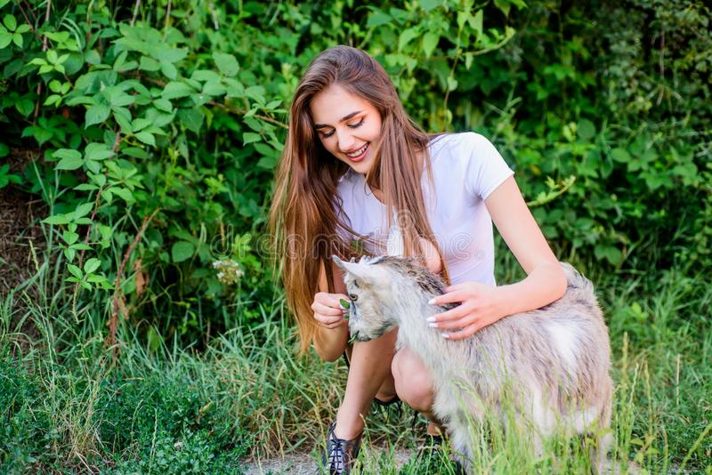 More care. farm and farming concept. Animals are our friends. happy girl love goat. village weekend. summer day. Love. And protect animals. contact zoo royalty free stock images