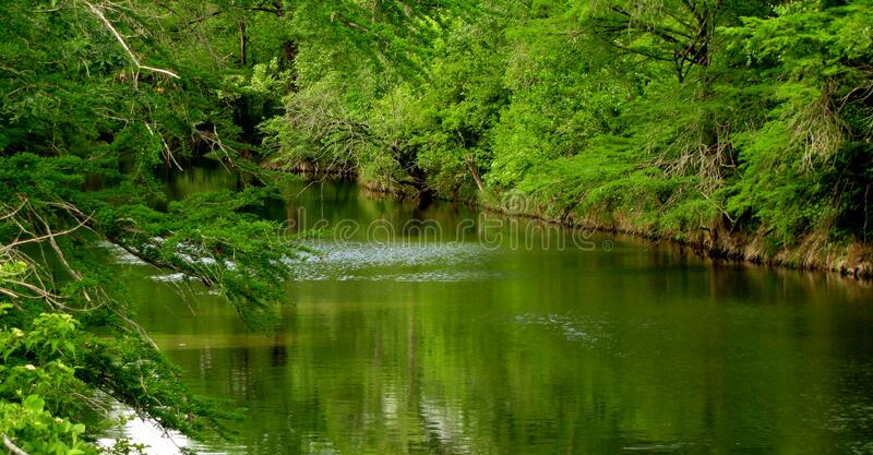 More creek. royalty free stock images