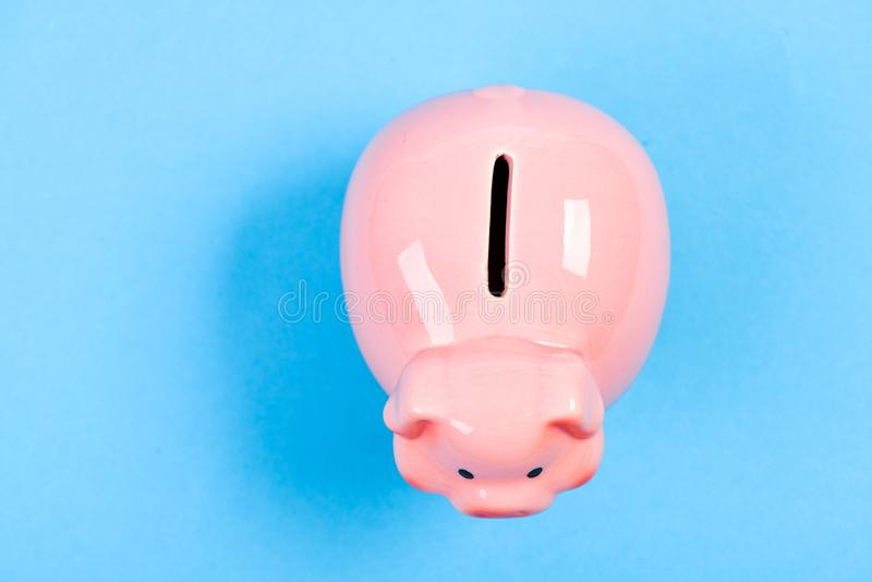 More ideas for your money. Financial education. Piggy bank symbol of money savings. Piggy bank adorable pink pig close royalty free stock image