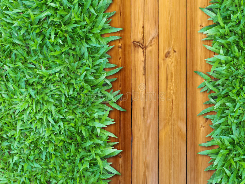 Download More Left Green Grass On Wood Stock Images - Image: 21937034
