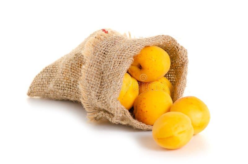 Morele w kieszonki pomarańcze owoc zdjęcie stock