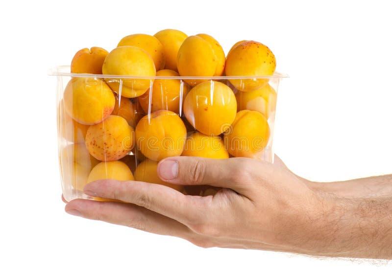 Morele w koszykowej pomarańczowej owoc w ręce zdjęcie stock