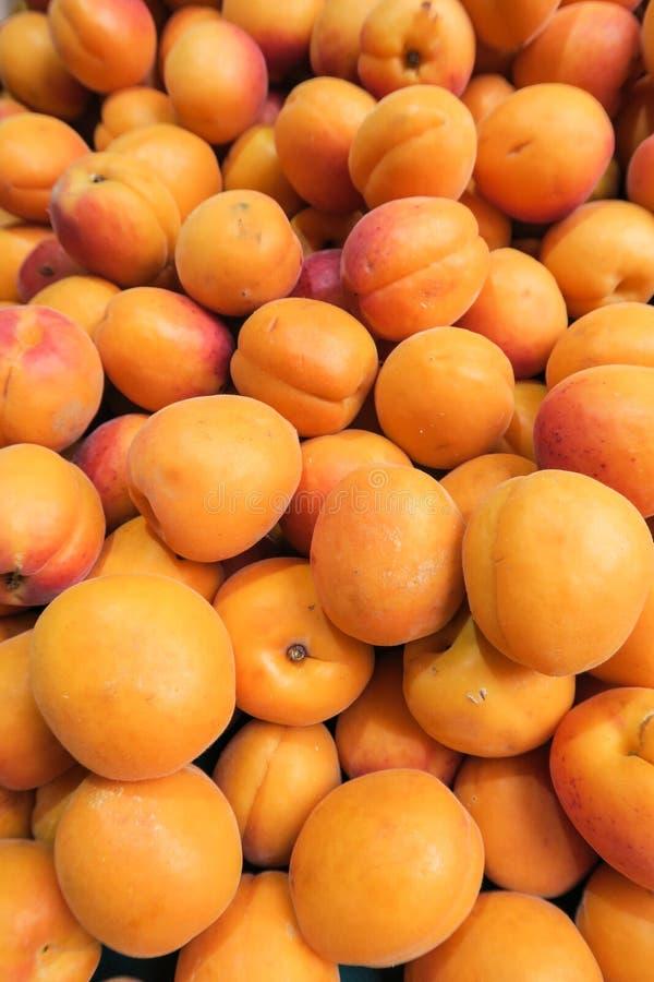 Morele zamykają up, świeża owoc, wyśmienicie jedzenie, pomarańcze obrazy royalty free