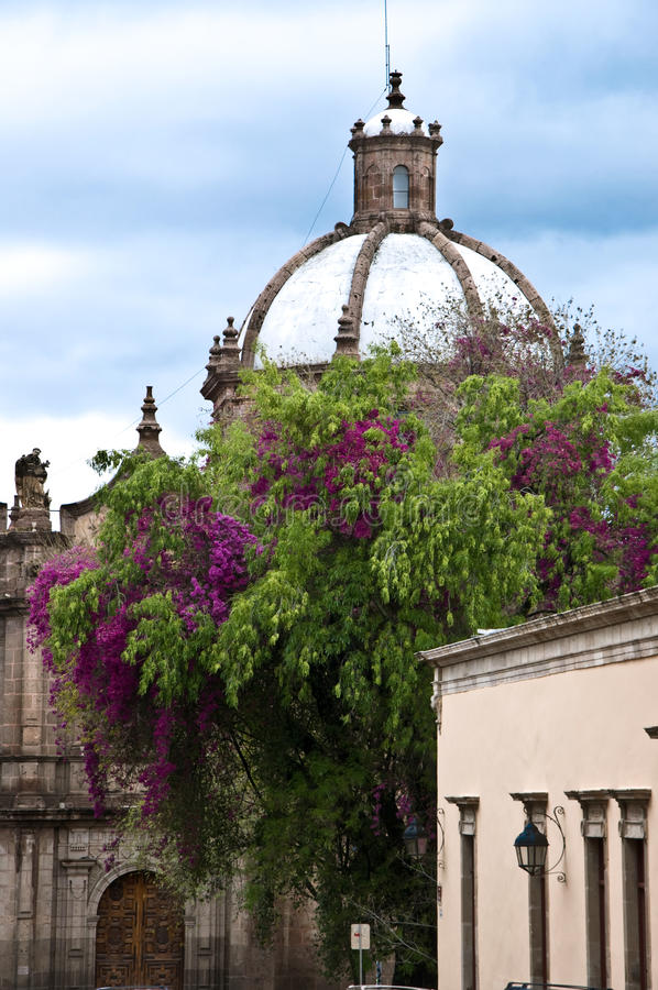 Download Morelia, Mexico stock image. Image of stone, bloom, front - 16764769