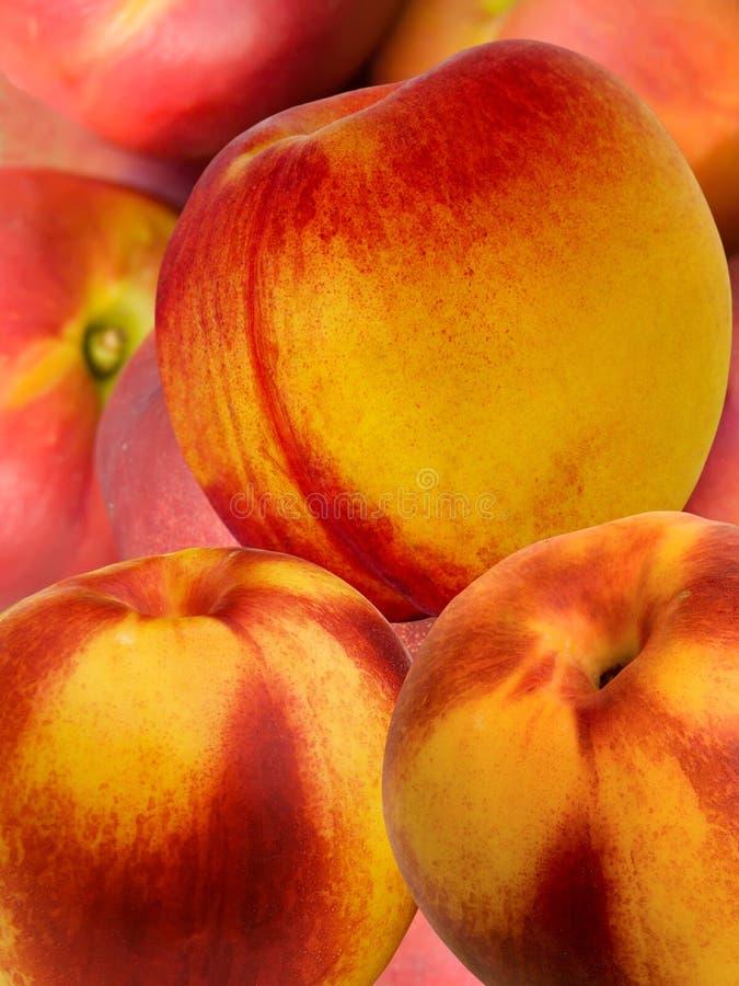 morelowa świeżej owoc hybrydu brzoskwinia obrazy royalty free