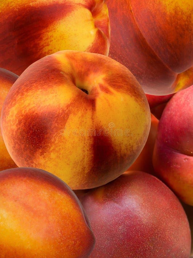 morelowa świeżej owoc hybrydu brzoskwinia obraz royalty free