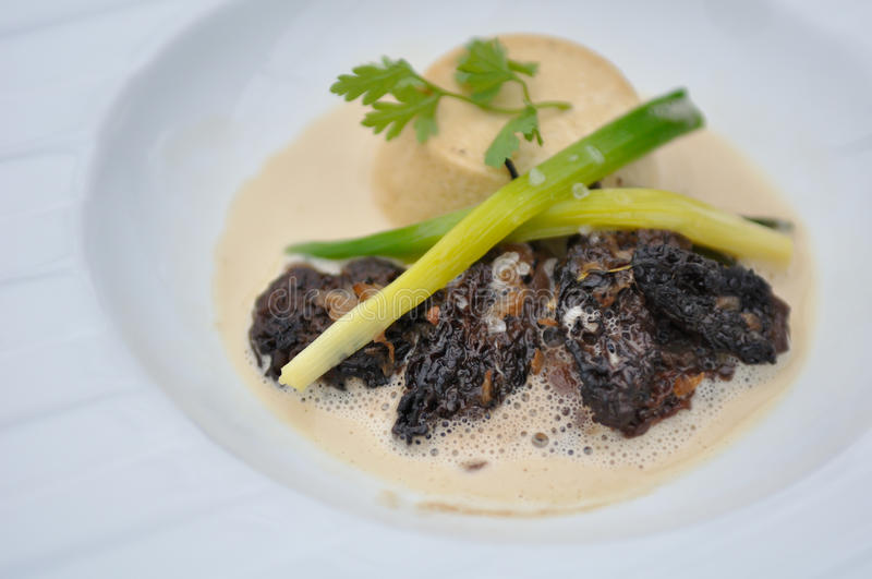 Morels with Sauce stock images