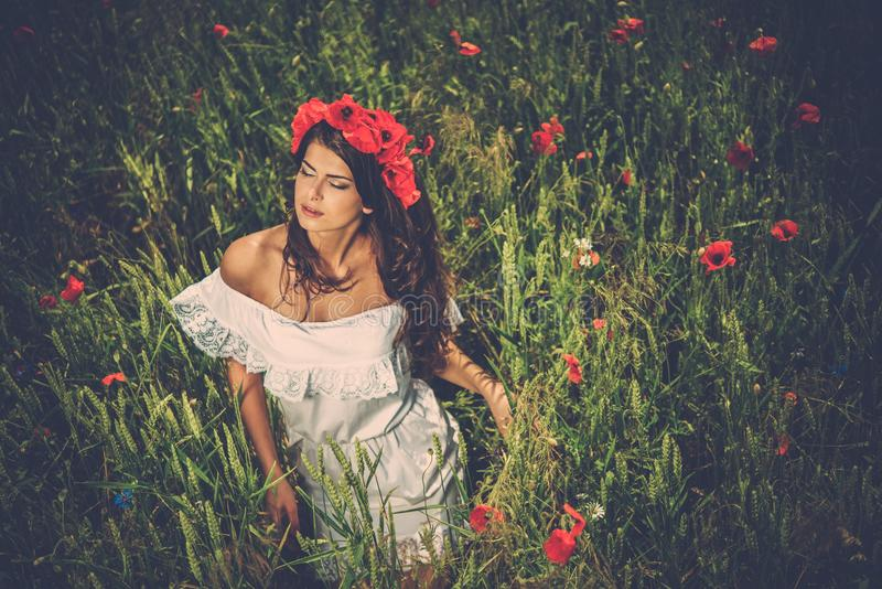 Morena bonita no campo de flor fotografia de stock
