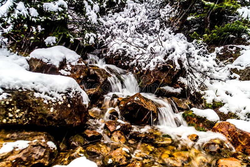 Morena jeziora, Banff park narodowy, Alberta, Kanada zdjęcie royalty free