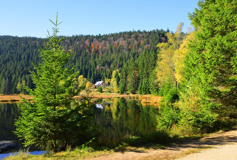 Morena jeziorny Kleiner Arbersee w parka narodowego Bawarskim lesie obrazy royalty free