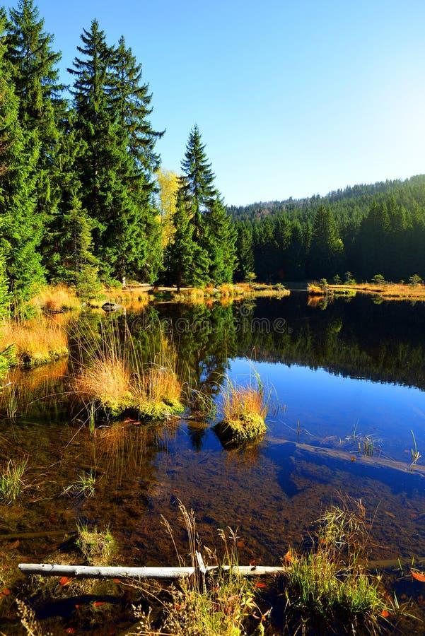 Morena jeziorny Kleiner Arbersee w parka narodowego Bawarskim lesie zdjęcia stock