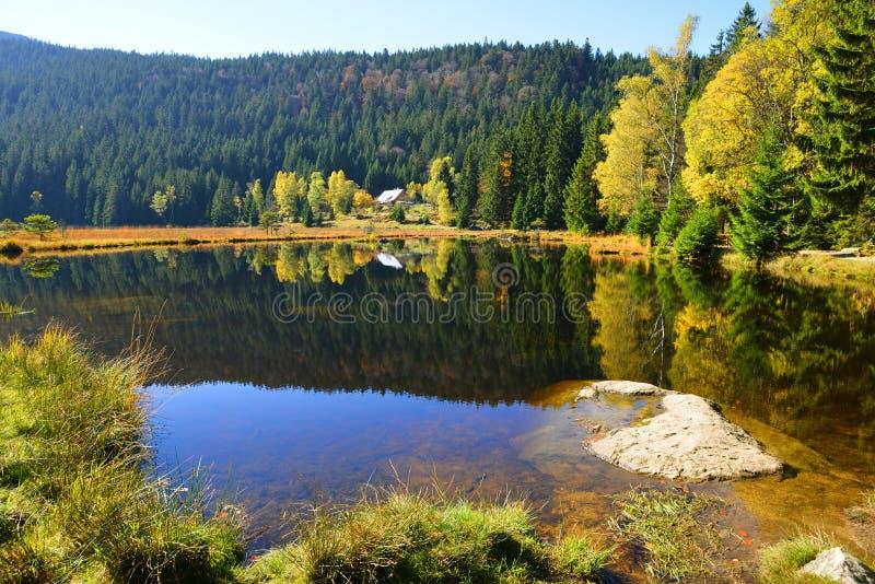 Morena jeziorny Kleiner Arbersee w parka narodowego Bawarskim lesie, Niemcy fotografia royalty free