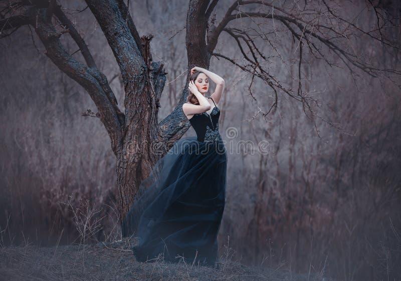Morena macia surpreendente, senhora em um vestido preto longo com os braços e os ombros abertos desencapados, menina apenas no fr imagens de stock