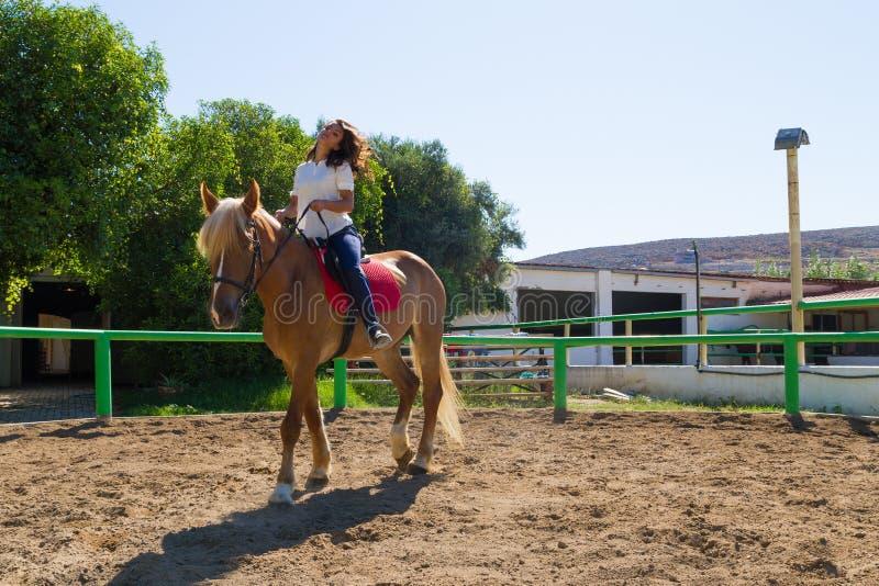 Morenita joven en un caballo marrón-rubio en el club del montar a caballo imagenes de archivo