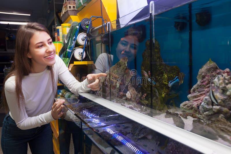Morenita joven que selecciona pescados tropicales en el tanque del acuario fotos de archivo libres de regalías