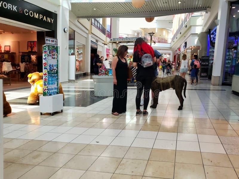 Moreno mall shopping center royalty free stock photos