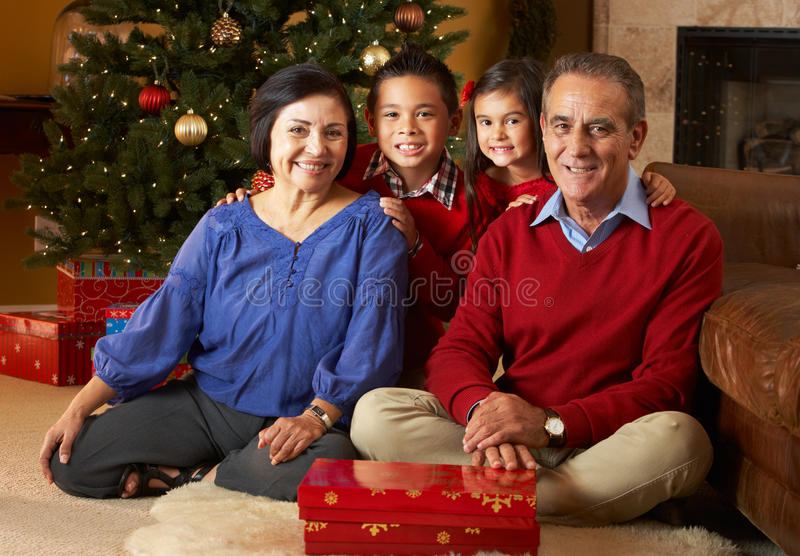Morföräldrar med barnbarn vid julgranen royaltyfria bilder