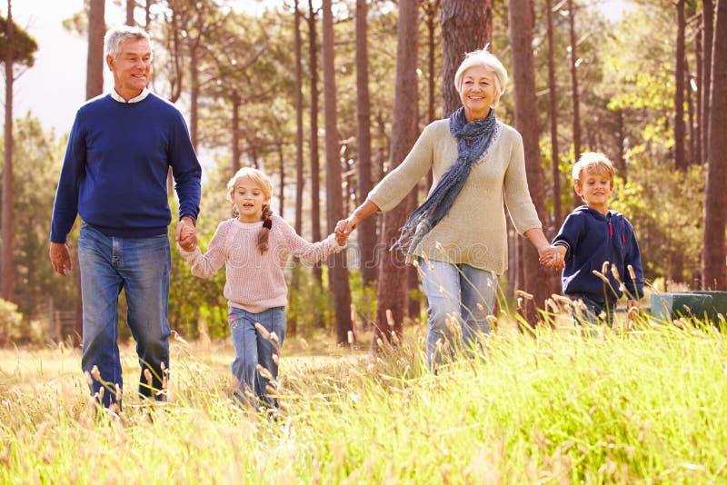 Morföräldrar och barnbarn som går i bygden royaltyfri foto