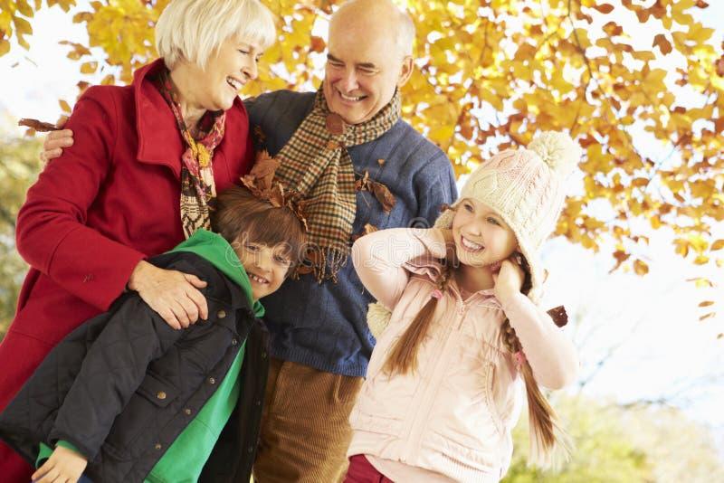 Morföräldrar och barnbarn som spelar under Autumn Tree arkivfoton