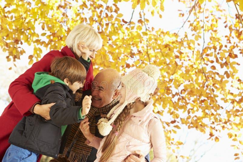 Morföräldrar och barnbarn som spelar under Autumn Tree arkivbild