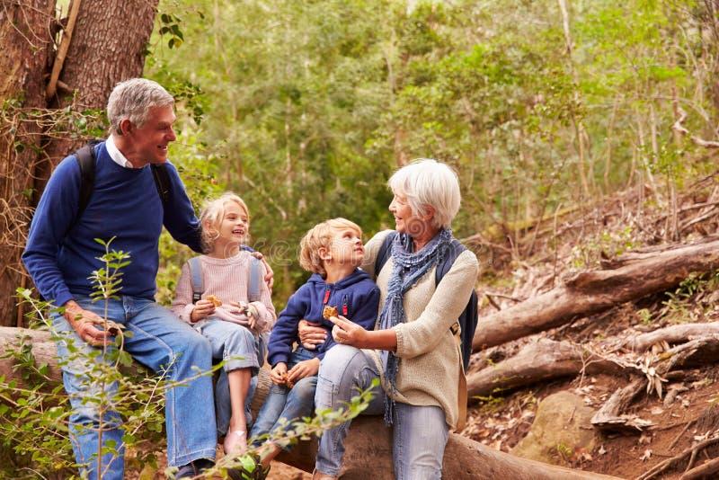Morföräldrar och barnbarn som tillsammans äter i en skog royaltyfria foton