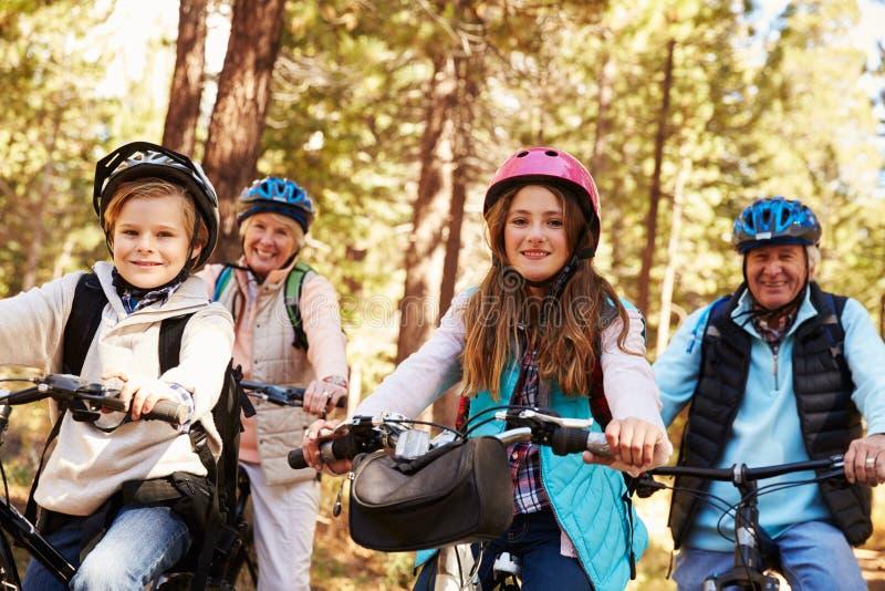 Morföräldrar och grandkids som cyklar på skog, skuggar, stänger sig upp royaltyfria bilder