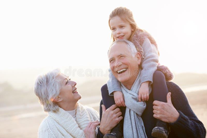 Morföräldrar och sondotter som går på vinterstranden arkivfoton