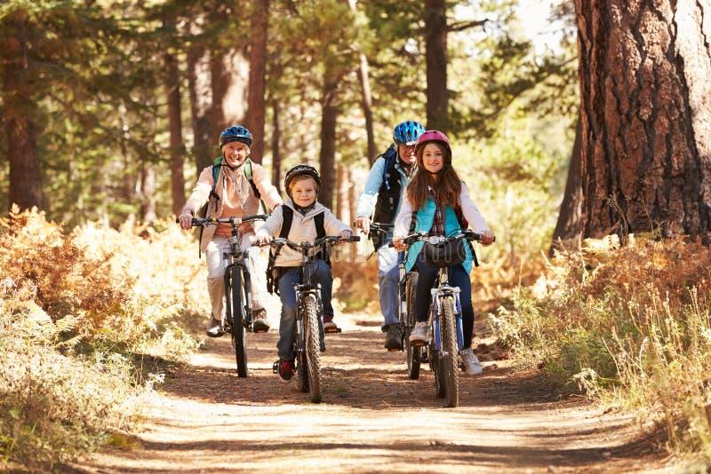 Morföräldrar och ungar som cyklar på skog, skuggar, Kalifornien arkivfoto