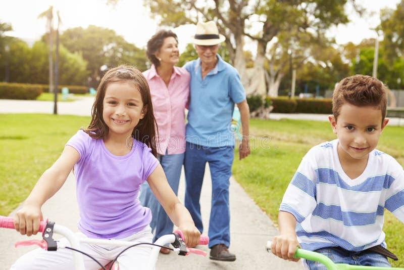 Morföräldrar som tar barnbarn till ritten, cyklar parkerar in arkivfoto